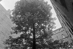 SL 015_Hinterhof_Berlin_1982