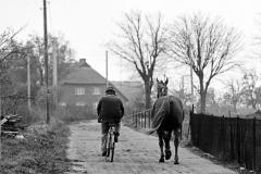 SL 050_Radfahrer mit Pferd_Rügen_1985