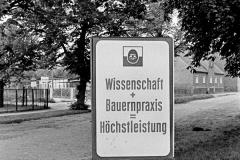 WM-028_Straßenwerbung_Neuenhagen_1989
