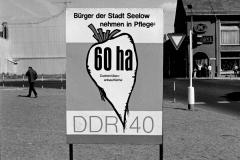 WM-031_Plakat-DDR-40_Seelow_1989